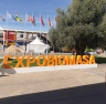 FERIA EXPO-BIOMASA 2019